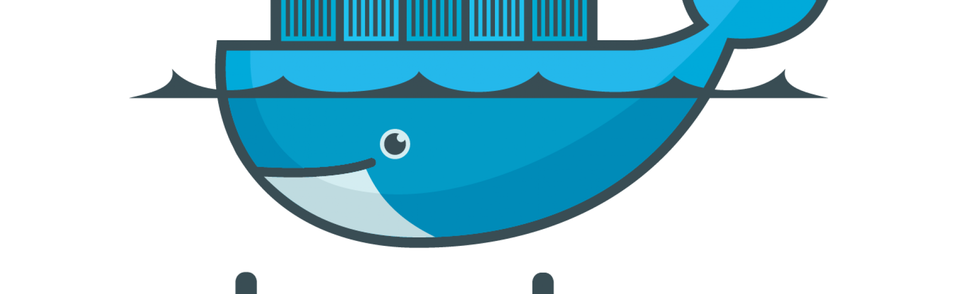 Start your adventure with Docker-Console | Droptica Blog