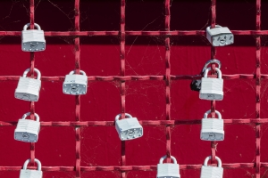 grey padlocks on the grey fence - symbol of security