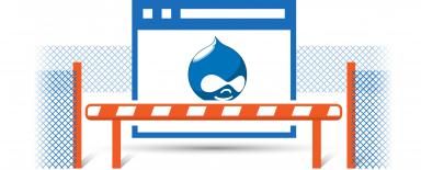 The illustration shows Site with Drupal logo guarded securely hidden behind a net