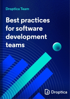 "Abstract cover of the e-Book. Its title is ""Best practices for software developmnt teams"""